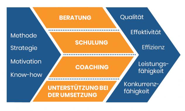 Konzept der Q-Consulting